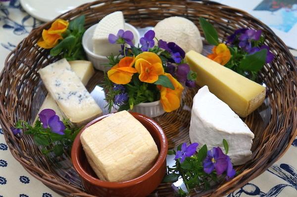 チーズはミルクのお漬物!?チーズのきほん、教えます。