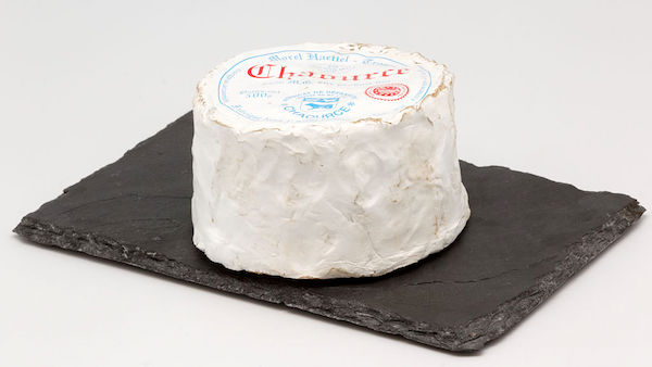 Chaource_(fromage)_01
