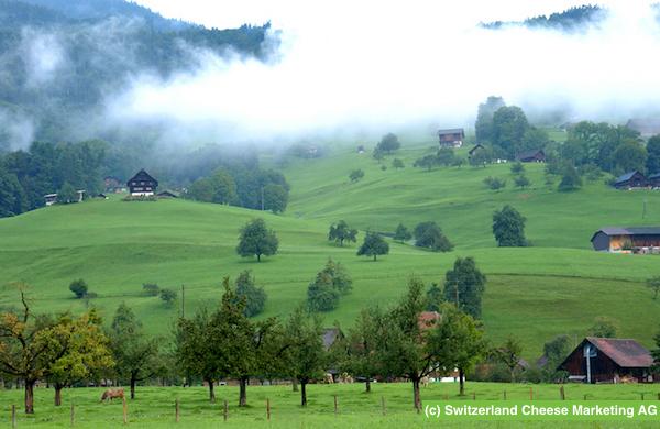 rev_sbrinz_08_SBR_Landschaft Giswil