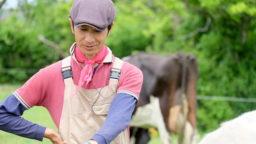 田んぼの中の大草原を、牛がゆく《新利根協同農学塾農場 前編》